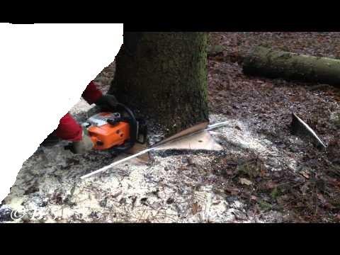 Alpinistyczna/Zwykła Kompleksowa Wycinka Drzew, Cięcie Opału,Rąbanie: zdjęcie 62091906