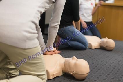 Pierwsza pomoc przedmedyczna- profesjonalne szkolenia: zdjęcie 73417105