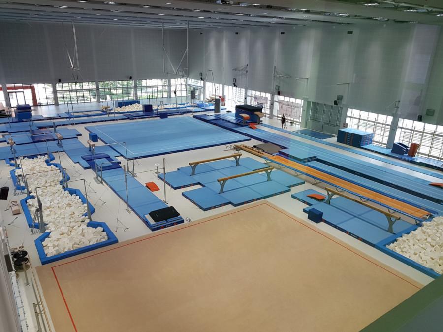 Gimnastyka dla dzieci i dorosłych od rekreacji po wyczyn: zdjęcie 77111514