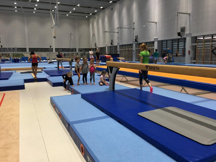 Gimnastyka dla dzieci i dorosłych od rekreacji po wyczyn: zdjęcie 77111524