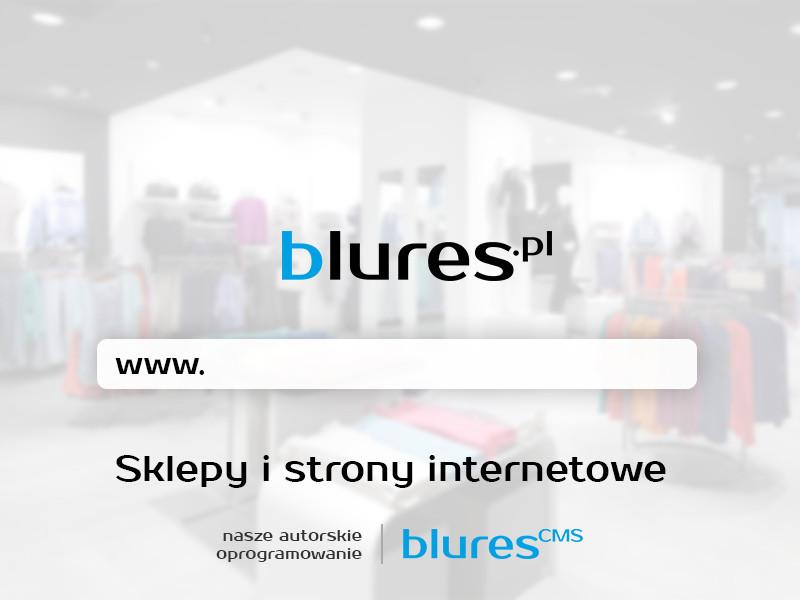 Strony www & sklepy internetowe   Pozycjonowanie SEO & SEM: zdjęcie 77837966