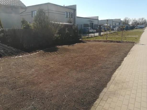 Ogrodnik, przycinanie drzew i krzewów. Wiosenne porzadki.: zdjęcie 79242510