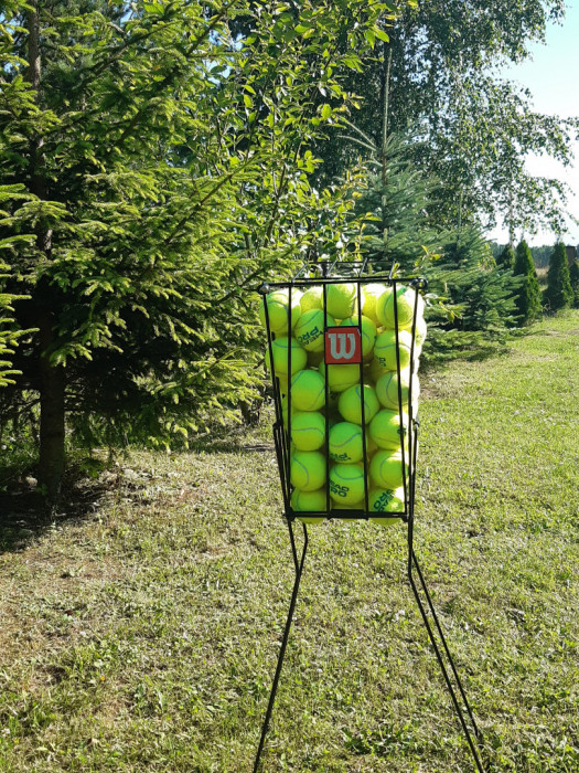 Tenis ziemny -nauka i gra profesjonalna: zdjęcie 83812924