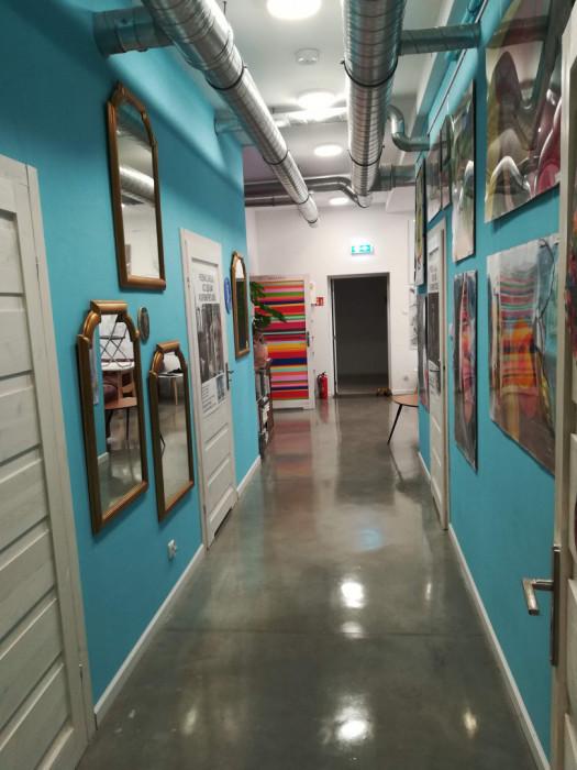 Sprzątanie mieszkań, garazy, piwnic, posesji...: zdjęcie 82782028