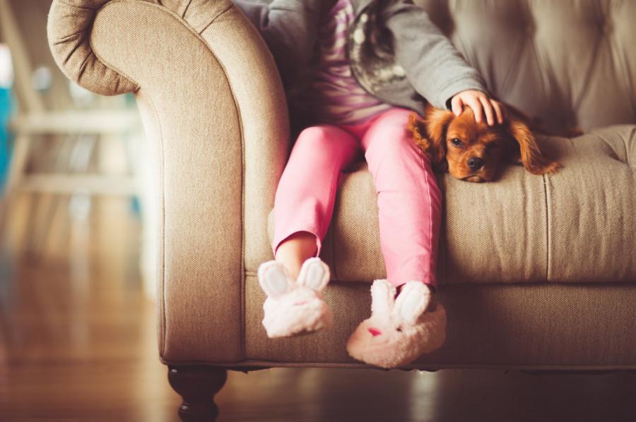 Psycholog dla dzieci i młodzieży: zdjęcie 84294002