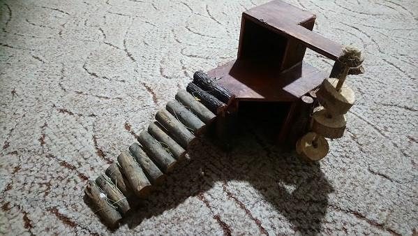 Domek dla gryzonia.: zdjęcie 86652335