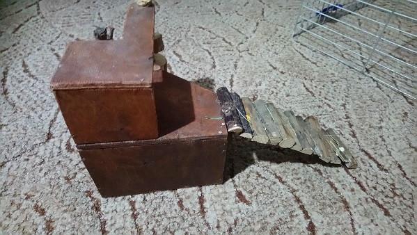 Domek dla gryzonia.: zdjęcie 86652337