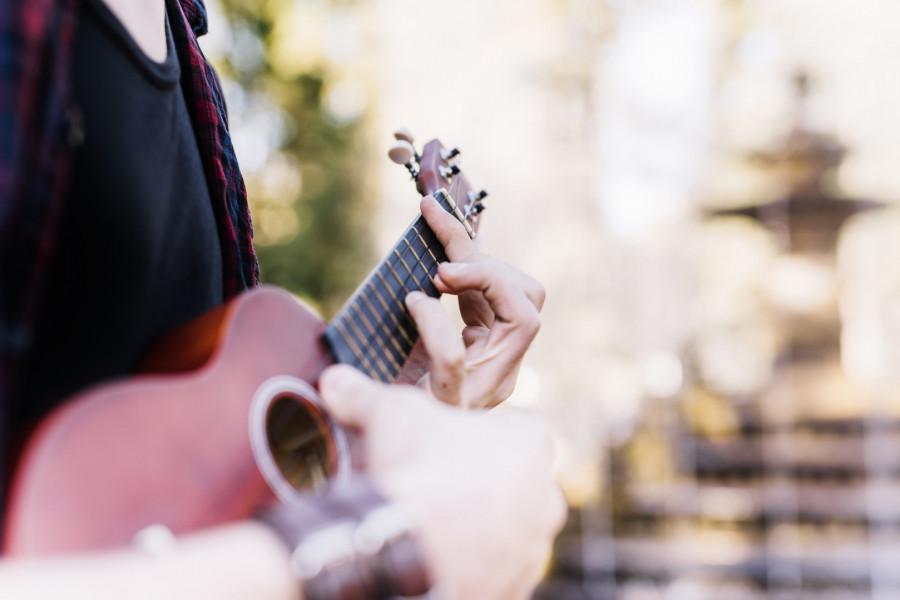 Profesjonalne lekcje gitary i ukulele, Nauka gry na gitarze i ukulele: zdjęcie 87740203