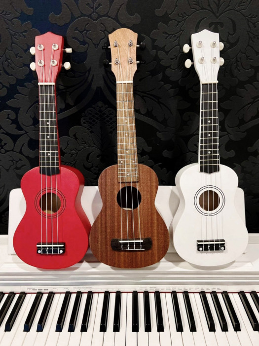Profesjonalne lekcje gitary i ukulele, Nauka gry na gitarze i ukulele: zdjęcie 87740204