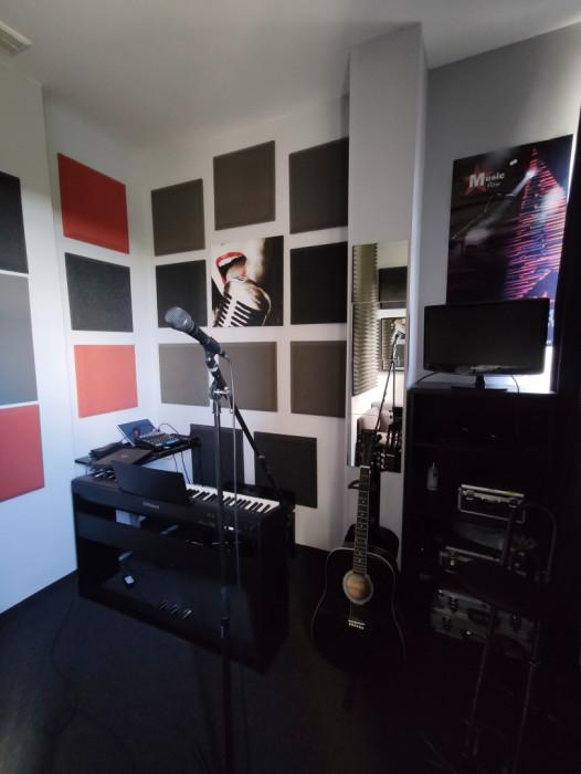 Profesjonalne lekcje gitary i ukulele, Nauka gry na gitarze i ukulele: zdjęcie 87740210