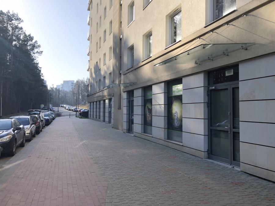 Przedszkole-żłobek-gabinet-handel-usługi-biuro-wejście z ulicy: zdjęcie 87622103