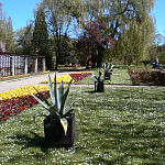 Park Oliwski latem