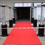 Ergo Arena wejście dla vip