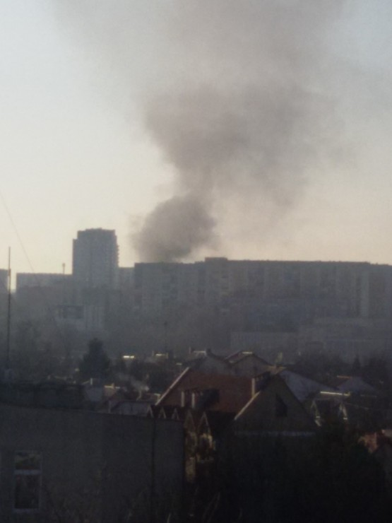 Pożar trawy na Podkarpackiej w Gdańsku