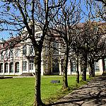 Katedra Oliwska, organy, park