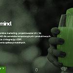 LemonMind.com planowanie strategii, online marketing, serwisy i sklepy internetowe