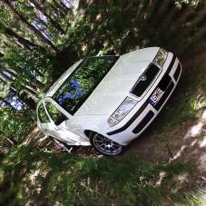 Octavia na leśnym szlaku