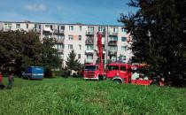 77-latka wypadła z okna - więcej informacji