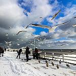 zima w Sopocie