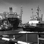 holowniki portowe