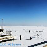 Brzezno 2011r