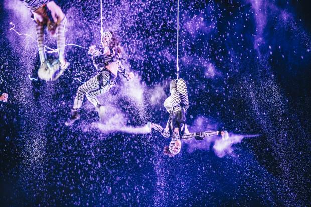 """Duchamp Pilot + Voala """"Muaré Experience"""""""