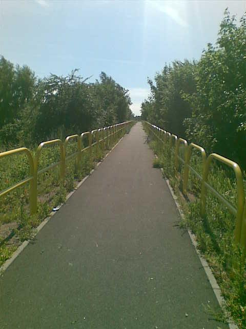 droga rowerowa wzdłuż nasypu nieczynnej lini kolejowej Pszczółki - Sobowidz