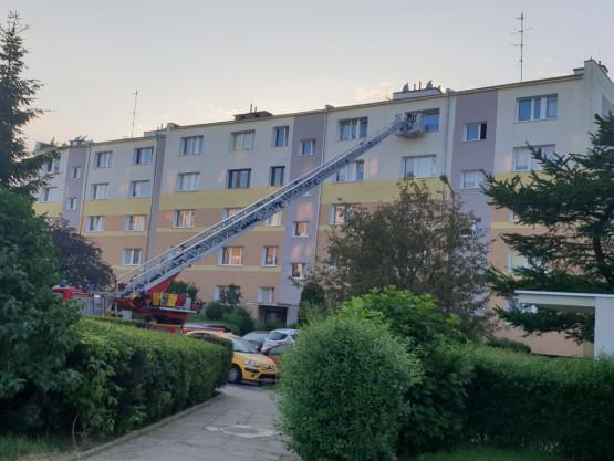Pożar altany i zadymienie w mieszkaniu na Chełmie