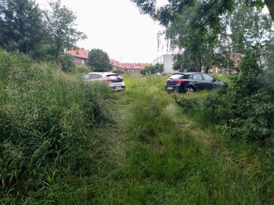 Parkują na trawie i chodnikach by uniknąć opłat