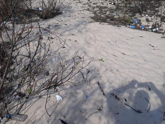 Zalegające śmieci między Stogami a Górkami Zachodnimi