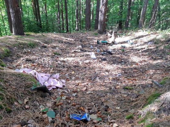 Mały Kack: nielegalne wysypisko w lesie