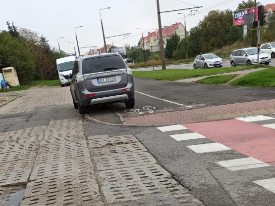 Łoś stanął na drodze rowerowej, a obok jest parking