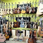 Gitary akustyczne w sklepie muzycznym GAMA w Gdańsku