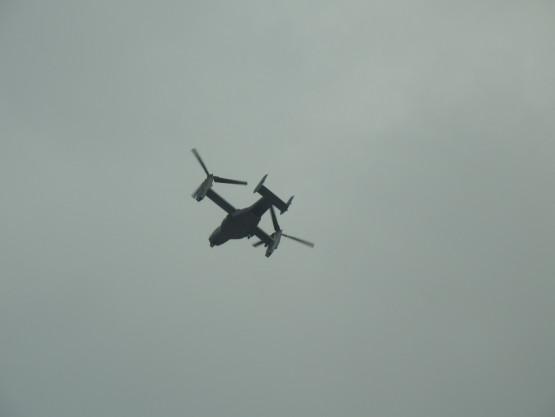 Osprey doleciał nad Gdynię