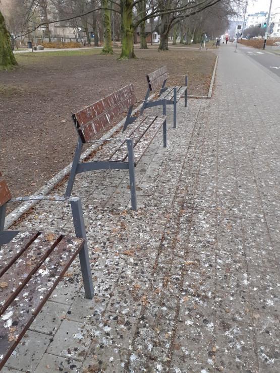 Tak wyglądają ławki w Gdyni na al. Piłsudskiego