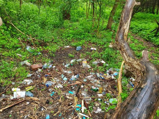 Sopockie Błonia pełne śmieci