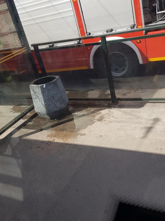 Strażacy ugasili śmietnik na Wyspiańskiego we Wrzeszczu