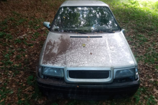 Porzucone auto w lasach oliwskich