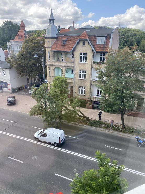 Złamane drzewo na wysokości poczty w Sopocie