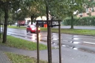 Al. Niepodległości - kładzenie asfaltu w deszczu