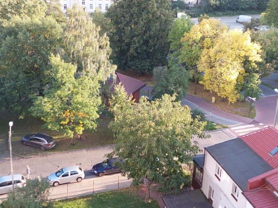 Parkowanie na skwerze w Sopocie