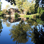 Młyn w Parku Oliwskim