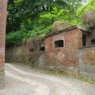 fortu przy zakręcie