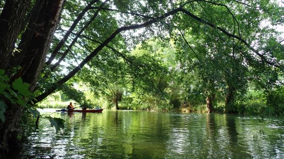 Poznaj z kajaka urocze zakątki górnego odcinka rzeki Raduni. Meandruje ona przez urocze kaszubskie łąki, pola i lasy z dala od cywilizacji.