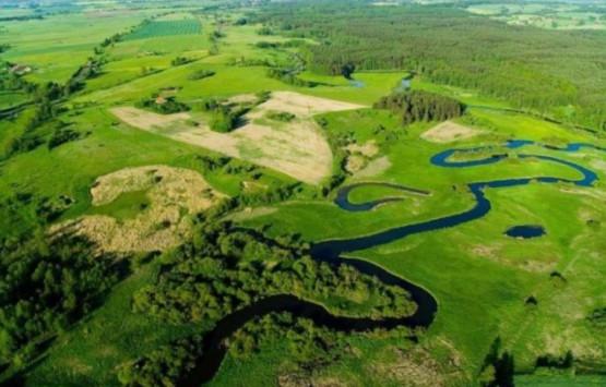 Łyna to najdłuższa i najpiękniejsza rzeka Warmii i Mazur. Zobaczymy ją w górnym odcinku i przełomie, gdzie nabiera trochę tempa odwiedzimy dwa rezerwaty przyrody, odetchniemy świeżym powietrzem.