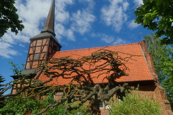 Wśród licznych żuławskich kościołów gotyckich, znaczna część to obiekty szachulcowe. Na powyższym zdjęciu przedstawiamy kościółek w Osicach.