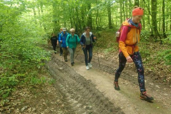 9 km trasa wieść będzie przez liczne wzgórza i wzniesienia Trójmiejskiego Parku Krajobrazowego. Dystans odpowiedni jest zarówno do osób młodszych, jak i starszych. Nasze wędrówki łączą pokolenia !