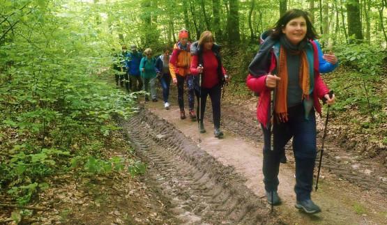 22 km trasa wieść będzie przez liczne wzgórza i wzniesienia Trójmiejskiego Parku Krajobrazowego. Dystans odpowiedni jest zarówno do osób młodszych, jak i starszych. Nasze wędrówki łączą pokolenia !