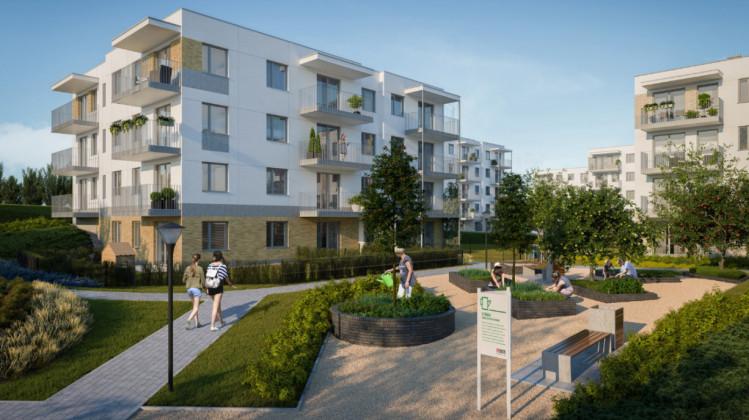W ramach inwestycji powstaną także zielone grządki, o które dbać będą mogli sami mieszkańcy.