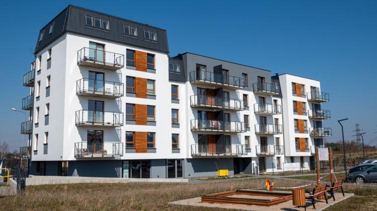 Naturalne elementy na elewacji budynku doskonale komponują się z zielonym otoczeniem.